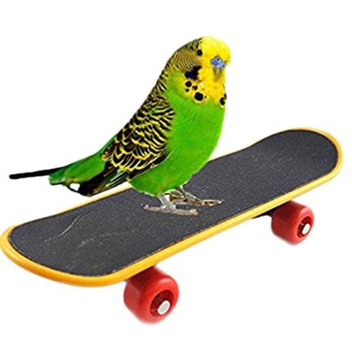 Vikenner Vogelspielzeug Skateboard Puzzle-Training Vogel Zubehör für den Käfig Papagei Sittich Wellensittich Nymphensittich Funny Spielzeug Einzelsaite Schwarz