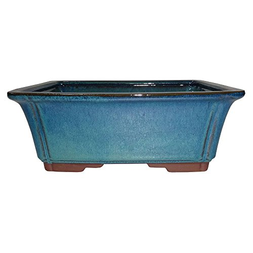 Brussel's 10' Rectangle Bonsai Glazed Ceramic Pot (Large, Teal)