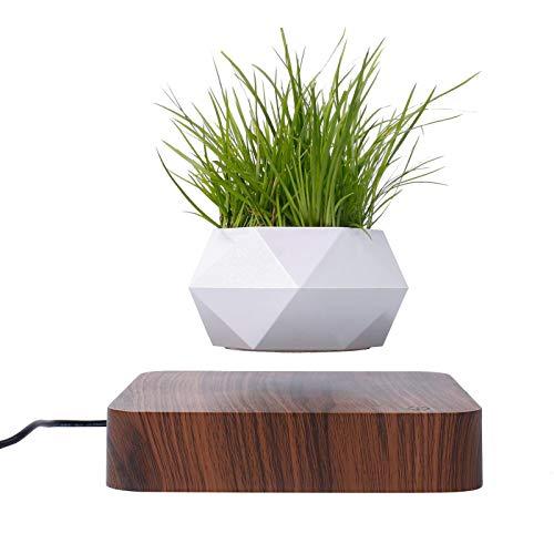 Neu schwebender Blumentopf   Kreativer schwebender Luft-Bonsai-Topf   Rotationspflanzgefäße   Magnetschwebebahn-Aufhängung Blumenschwimmender Topf   Topfpflanzentisch-Dekor   Geburtstagsgeschenk