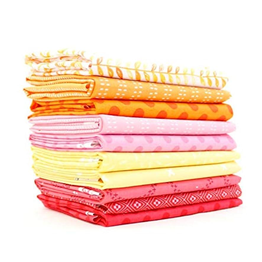 Southern Fabric Starburst Half Yard Bundle (10 pcs) - Mixed Designers 18 x 43 inches (45.72cm x 109.22cm) DIY Quilt Fabric