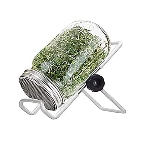 DierCosy Tools Mason Frascos Kit de brotes Germinación Juego de germinación de semillas con soporte de cubierta para cultivar brócoli Alfalfa Bean Sprouts 1000ml
