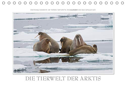 Emotionale Momente: Die Tierwelt der Arktis/CH-Version (Tischkalender 2021 DIN A5 quer)