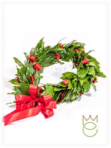 Coroncina Corona di Alloro Laurea con Nastro in Raso Diversi Colori Promozione (Rosso)