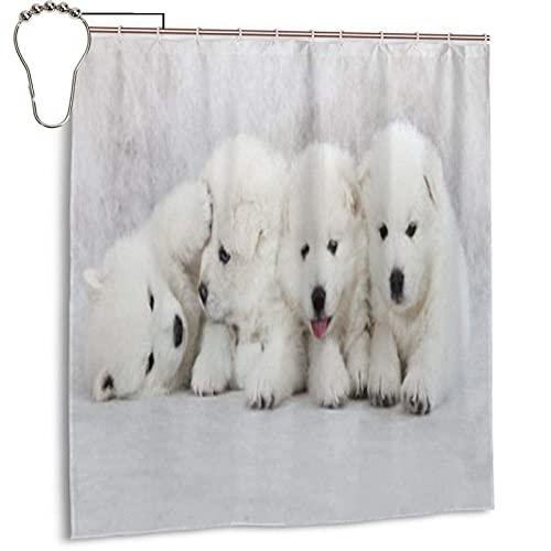 Cortinas de ducha con diseño de perritos de un mes de antigüedad, resistentes al agua, de secado rápido, decorativas, accesorios de baño, para fondo de fiesta, 167,6 x 183 cm