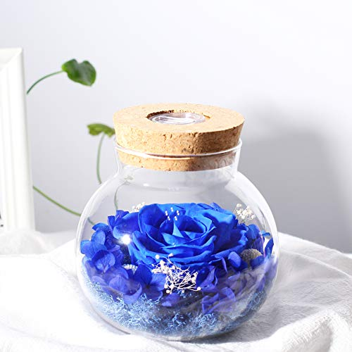 Handmade Preserved Real Rose with Led Mood Light