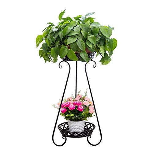Jardin Étagère En Fer Forgé Avec Balcon Multicouche Étage Vert Tiges Orchidées Fleur Rack