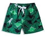 ALISISTER Chicos Niño Bañador 6-8 Años Patrón de Dinosaurio Verde 3D Cintura Elástica Trajes de baño Playa Bañadores Pantalones Cortos Pantalones