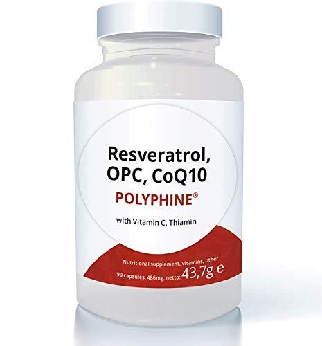 Swiss Point Of Care Polyphine® - Resveratrol, OPC & Q10 alta dosis, 90 cápsulas veganas | 500mg de polifenoles (OPC, Resveratrol), 60mg de Q10 por dosis diaria | con vitamina C y B1
