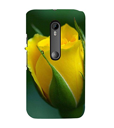 Fiobs Designer Back Case Cover for Motorola Moto G3 :: Motorola Moto G (3rd Gen) :: Motorola Moto G3 Dual SIM (Rose Flowers Floral Ful Yellow Gulaab Aroma Smell)