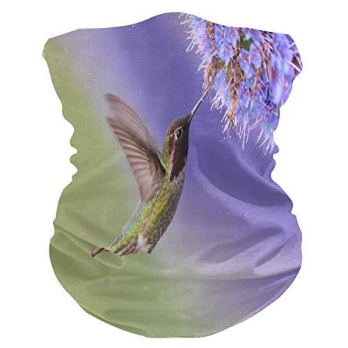 Magic Bandana, Colibri Vliegtuig hoofddeksel, hals gamas, zonwering, winddicht, voor mountainlopen en klimmen