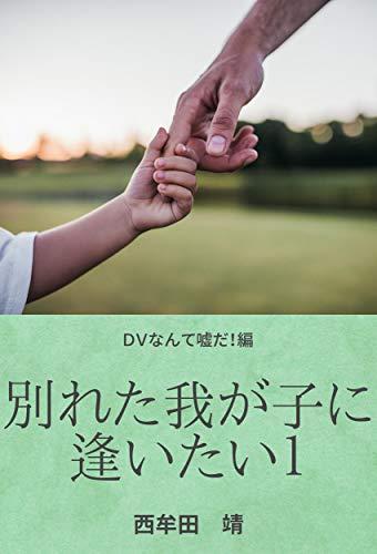 「別れた我が子に逢いたい」①~DVなんて嘘だ!編