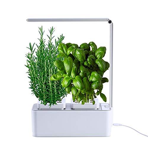 CRZJ Indoor Herb Garden, Hydroponics Watering Growing System, LED-Licht wachsen für Blumen, Obst, Gemüse, Smart Garden Kit für Zuhause, Zimmer, Küche, Büro