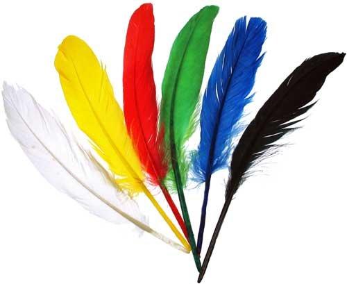 efco Federn Indianerfedern, Mehrfarbig, 12–15cm, 20Stück