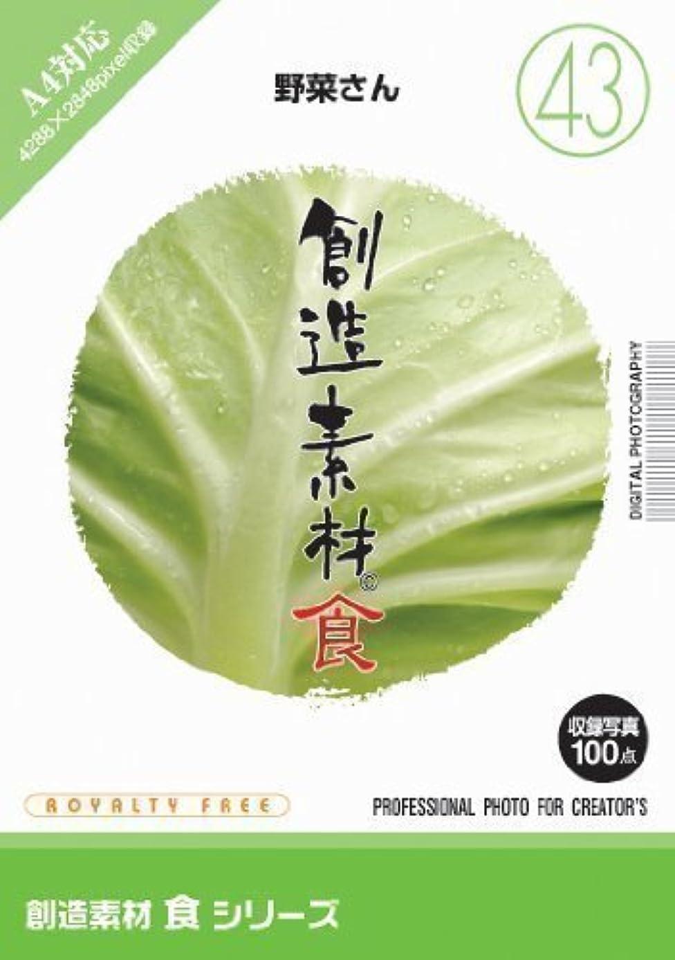 イブニングメーカープロフェッショナル創造素材 食(43)野菜さん