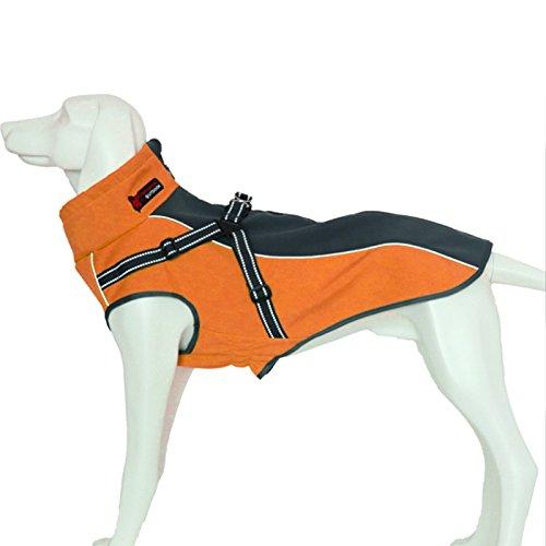 Alfie Pet by Petoga Couture Fellpflege–Brady Wasserdichter Hundemantel mit Integriertem Geschirr, XS, Orange