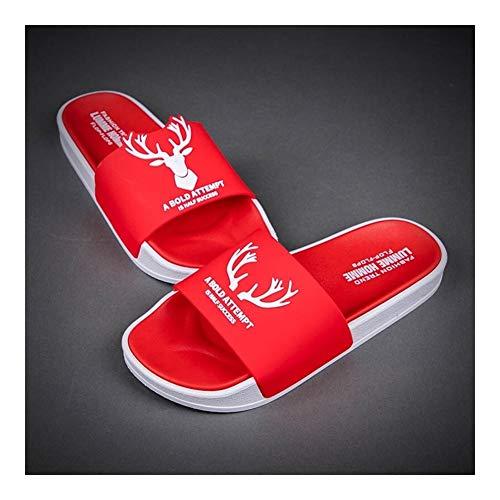 Zapatillas de interior, de espuma de memoria lavab Fashion Wear zapatillas de verano de las mujeres antideslizante personalidad sandalias al aire libre de interior Inicio suave tirón inferiore