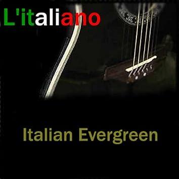 Italian Evergreen