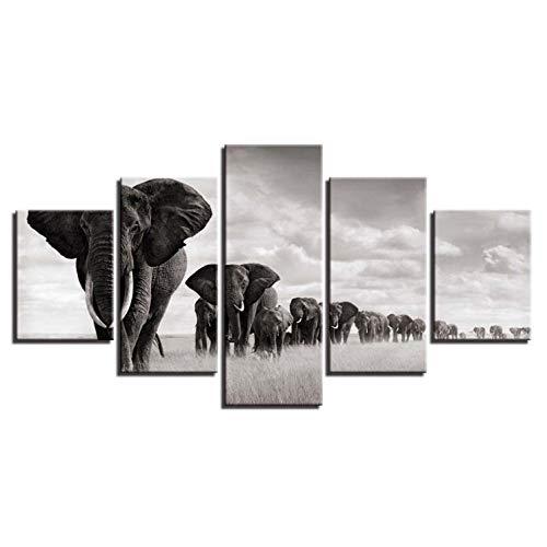 WPHRL Cuadro En Lienzo 5 Partes Pintura Mural Obra Elefante Animal Blanco y Negro Impresión En Lienzo Arte Impresión De La Lona Decoración del Hogar 150cm(W) x80cm(H)