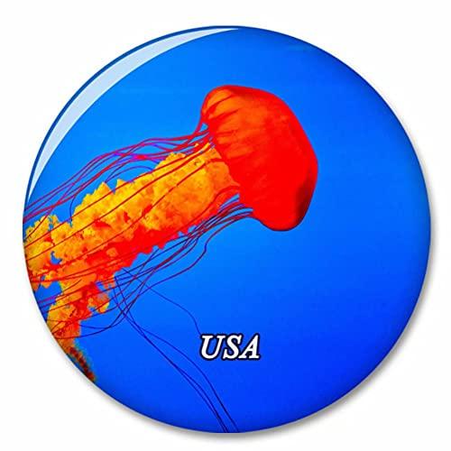 USA Amerika Tennessee Aquarium Chattanooga_ Kühlschrank Magnete Dekorative Magnet Flaschenöffner Tourist City Travel Souvenir Collection Geschenk Starker Kühlschrank Aufkleber
