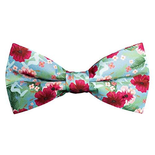 VLIEGENFAENGER vlinderdas met bloemenpatroon voor heren I groene kleurrijke vlinderdas al gebonden en verstelbaar voor het pak I combineerbaar met bretels & insteekdoek incl. geschenkdoos