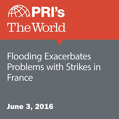 Flooding Exacerbates Problems with Strikes in France audiobook cover art