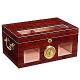 Ljf Boîte à cigares Cigar Humidor Ménage Grande capacité Cigare Cabinet Pine...