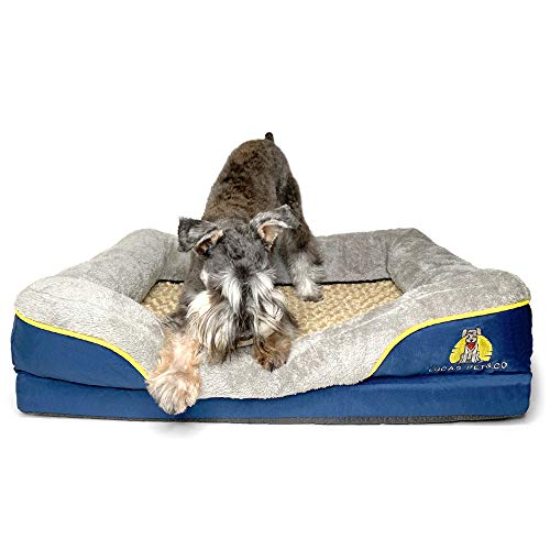 LUCAS PET&CO – Orthopedic Memory Foam Dog Bed with Fully Interchangeable Removable Washable Cover an Extra Cover Bundle (Medium)