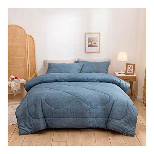 AntiGnor Svetanya Dots Lines Quilted Quilt Queen King Size Winter Thick Comforter Set Brushed Sanding Microfiber Polyester Blanket (Color : 20204742, Size : Twin 173x218cm)