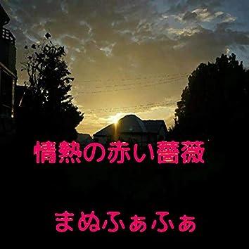 Jyounetsunoakaibara (feat. VY1V4)