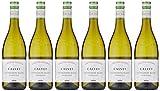 Calvet - Limited Release - Bordeaux Sauvignon Blanc - White Wine - 6 x