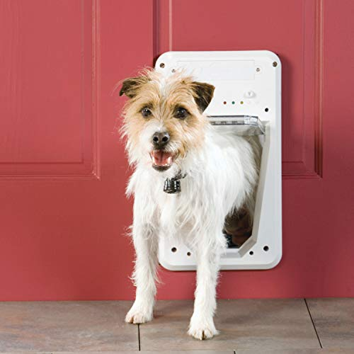 2021's Best Smart Pet Doors (And Why You Should Have One)