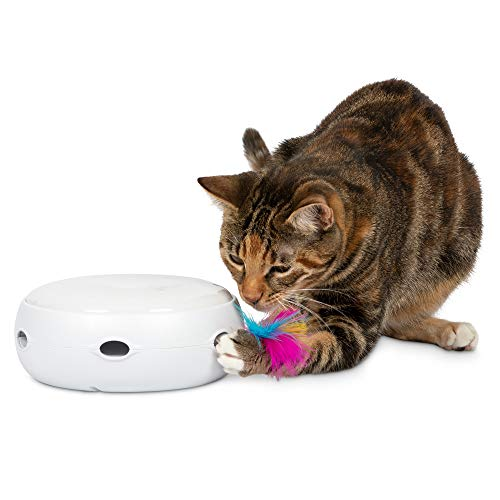 PetFusion Ambush Interactive Electronic Cat Toy with Rotating Feather. (Smart Modes, Nighttime Light, Auto Shut-Off, Batteries Included). Replacement Feathers Available. 12 Month Warranty