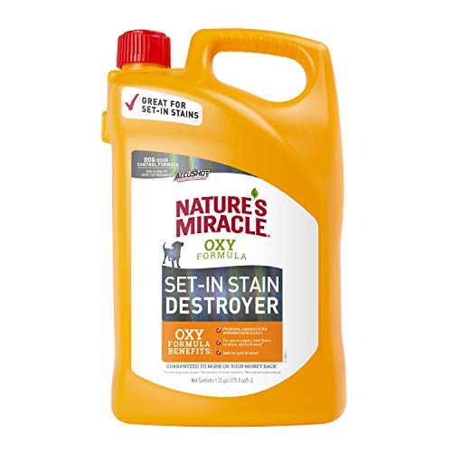 Nature's Miracle P-98175 Set-In Stain Destroyer for Dogs, Orange Oxy with Odor Control Formula,170 Oz