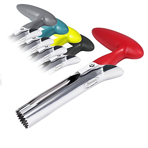 Apple Corer, Newness Premium Apple Corer Remover, Stainless Steel Apple or Pear Core Remover Tool for Home & Kitchen with Sharp Serrated Blade