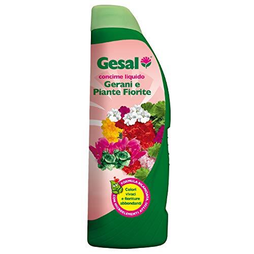 GESAL Concime Liquido per Gerani e Piante Fiorite, Per Colori vivaci e Fioriture abbondanti, 1 l
