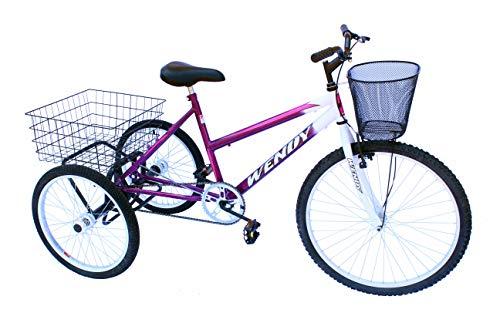 Triciclo adulto onix cor violeta