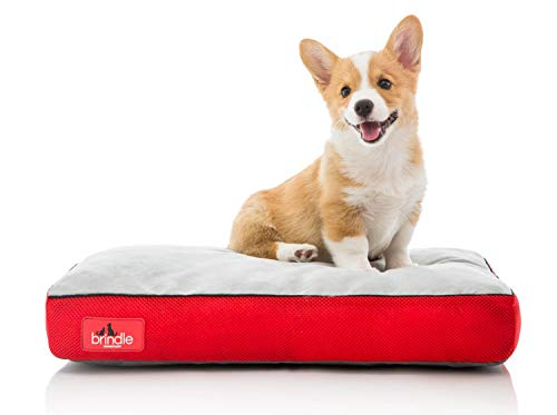 Brindle Soft Memory Foam Dog Bed with Removable Washable Cover - 22in x 16in - Red