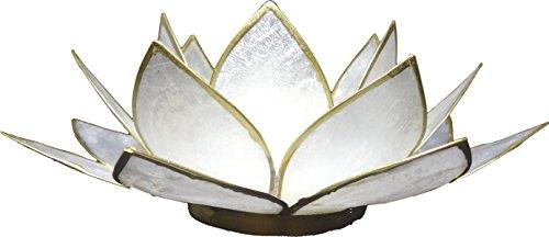 Trimontium Teelichthalter Perlmuttschimmer in Form Einer dreiblättrigen Lotusblüte mit Info, Capiz-Muschel, Perlmutt, 14 x 14 x 8 cm