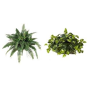 Silk Flower Arrangements Nearly Natural 40in. Boston Fern (Set of 2) Artificial Plant, Green, 2 Piece & Natural 6708 15in. Pothos Ledge (Set on Foam) Silk Plant, Green