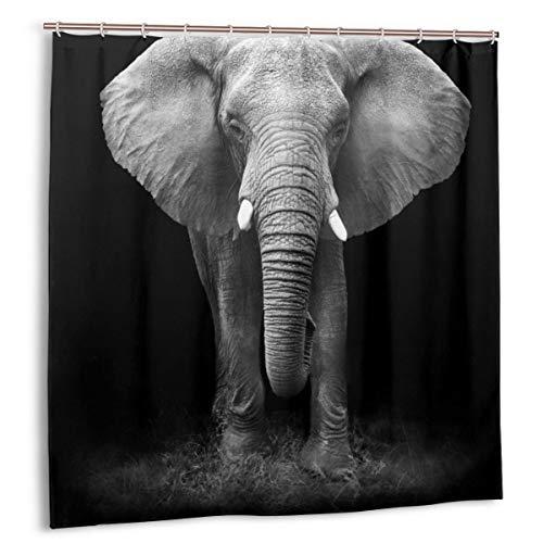 DmiGo Duschvorhang,schwarzes Themenfoto von Baddekor aus echtem Elefantenstoff mit Haken 150 cm x 180 cm