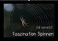 Voll vernetzt - Faszination Spinnen (Wandkalender 2022 DIN A2 quer): Ob im Netz oder im Gegenlicht, die Welt der Spinnen ist faszinierend (Monatskalender, 14 Seiten )