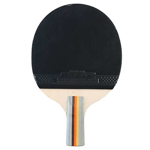 %71 OFF! Anser 1 Star Short or Long Handle Ping Pong Paddle Table Tennis Racket with Case (Long Hand...