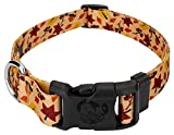 Country Brook Petz - Deluxe Fall Foliage Dog Collar - Awesome Autumn Collection with 6 Designs You'll Fall for (1 Inch, Large) - Made in The U.S.A.