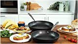 Top 30 Best All Clad 12 Fry Pans
