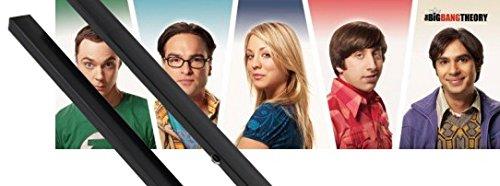 1art1 The Big Bang Theory Midi Poster (91x30 cm) Sheldon, Leonard, Penny, Raj, Howard Et Kit De Fixation Noir