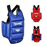 Twister Reversible(Blue/RED) Chest Guard Protector for Boxing Karate Taekwondo Muay Thai (Small)