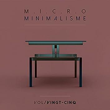 Micro Minimalisme Vol. Vingt-Cinq