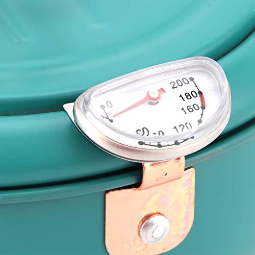 Freidora de cocina, freidora de acero inoxidable controlable por temperatura resistente a altas temperaturas con tapa y asa para alimentos fritos