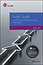 Best government auditing standards 2016 Reviews