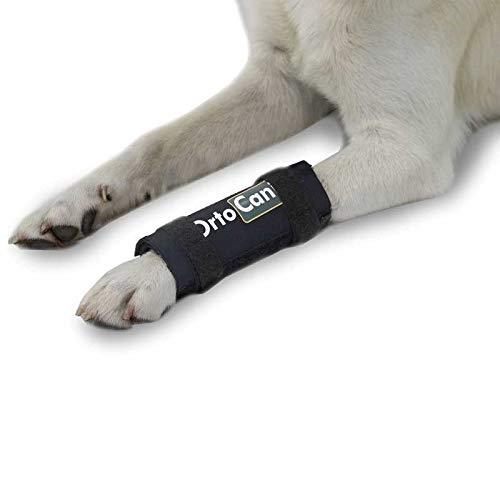 Ortocanis - Soporte de carpo para Perros con artrosis, Lesiones a ligamentos, carpo inestable - Talla XS